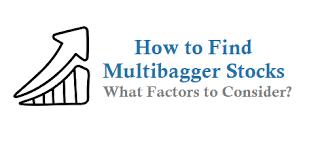 How to Identify Multibagger stocks?